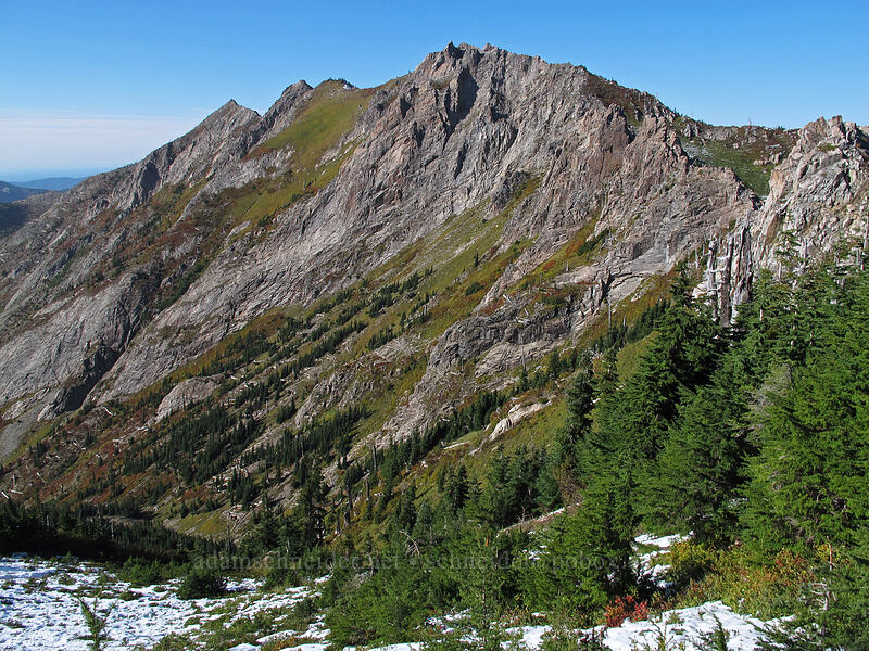 Whittier Ridge [Mt. Whittier Trail, Mt. St. Helens National Volcanic Monument, Washington]