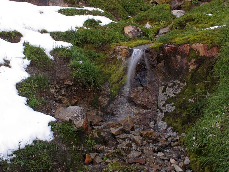 windblown waterfall [Boundary Trail, Mt. St. Helens National Volcanic Monument, Washington]