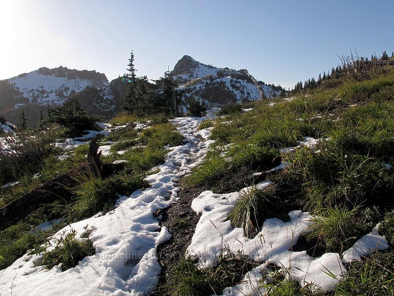 Mt. Margaret & Mt. Teragram [Boundary Trail, Mt. St. Helens National Volcanic Monument, Washington]