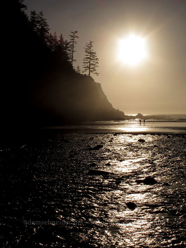 late afternoon sun [Short Sands Beach, Oswald West State Park, Oregon]