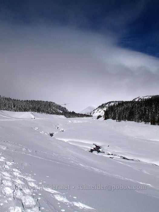 view toward Mt. Hood [White River Canyon, Mt. Hood National Forest, Oregon]
