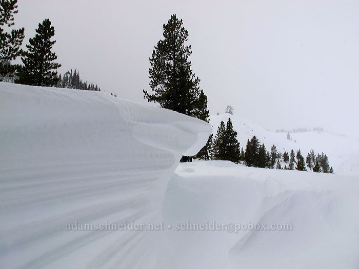wind-sculpted snow [White River Canyon, Mt. Hood National Forest, Oregon]