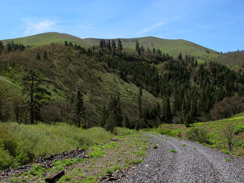 Stacker Butte [Klickitat Trail, Klickitat County, Washington]