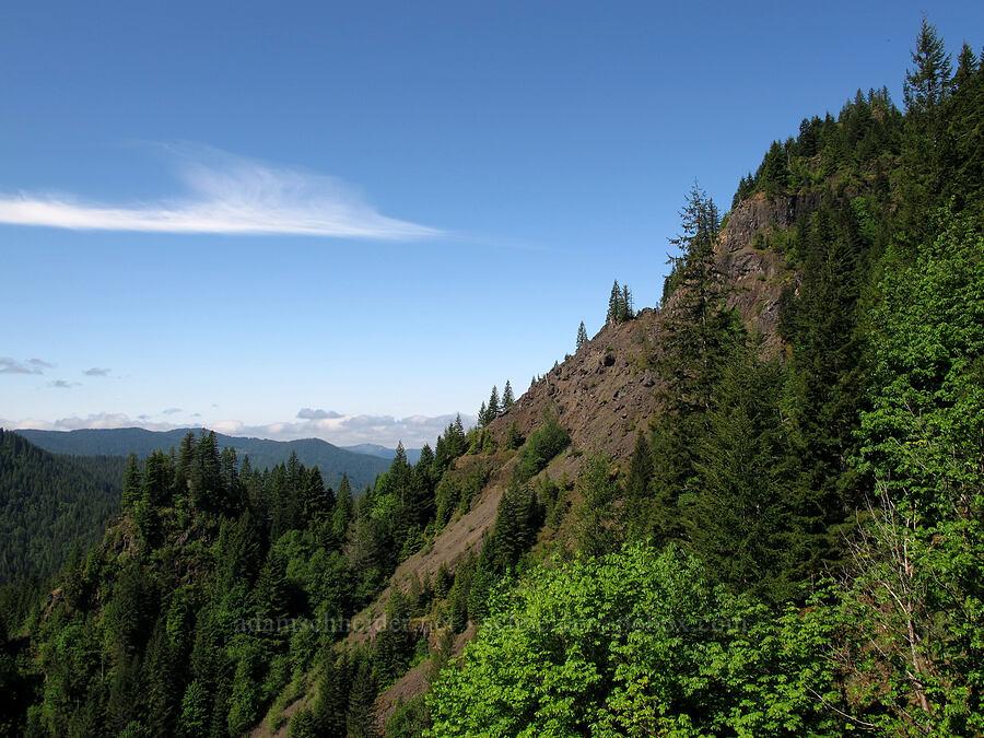 Elk Mountain [Elk Mountain Trail, Tillamook State Forest, Oregon]