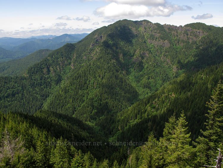 Kings Mountain [Elk Mountain summit, Tillamook State Forest, Oregon]