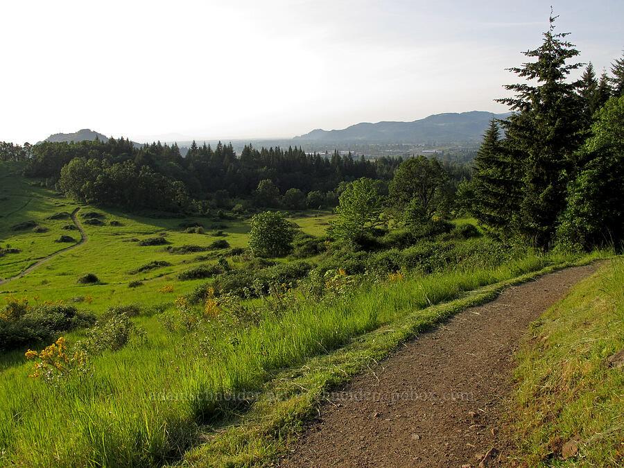 spring meadow [Trail 3, Howard Buford Recreation Area, Lane County, Oregon]