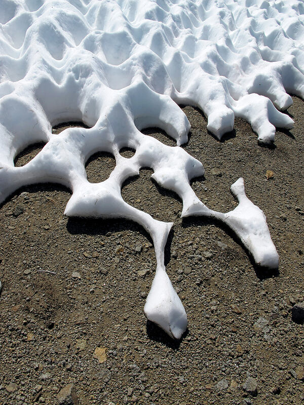 melting snow [Round Top, Mokelumne Wilderness, California]