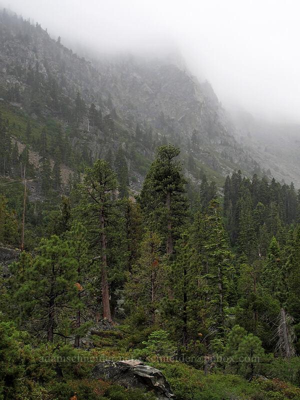 Indian Rock, in the clouds [Glen Alpine Trailhead, Lake Tahoe Basin, California]