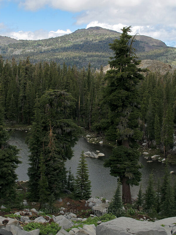 Mt. Tallac & Lake Margery [Pacific Crest Trail, Desolation Wilderness, California]