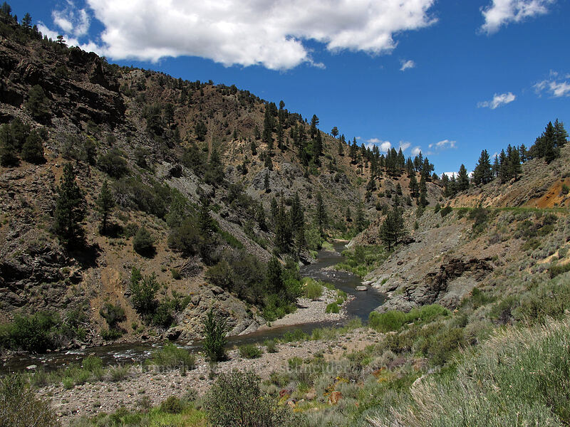 East Fork Carson River [CA-89, Toiyabe National Forest, California]