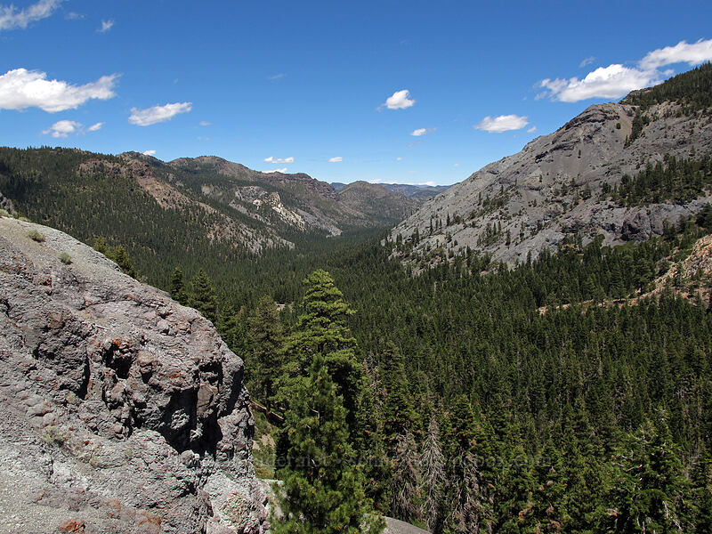 Silver Creek Valley [CA-4, Toiyabe National Forest, California]