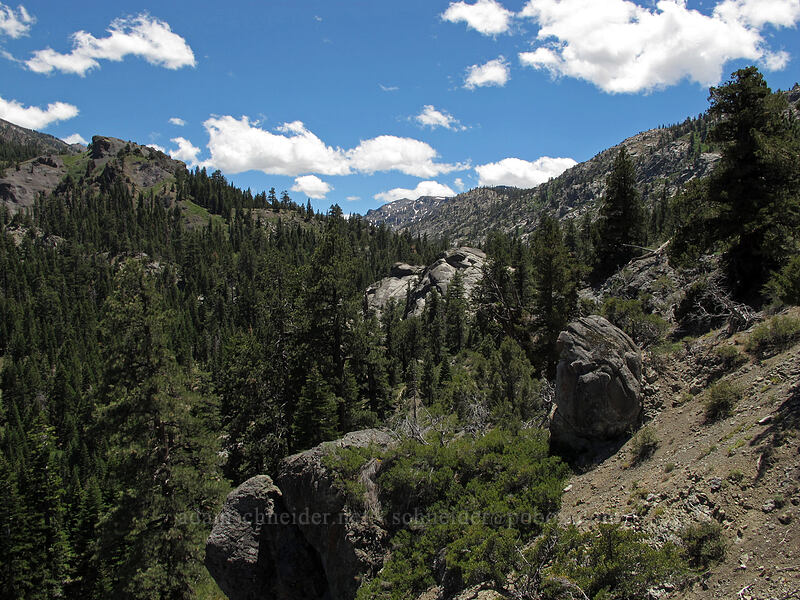 Noble Canyon [CA-4, Toiyabe National Forest, California]