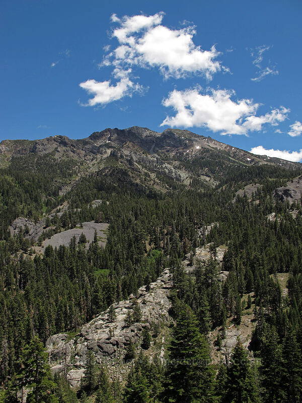 Silver Peak [CA-4, Toiyabe National Forest, California]