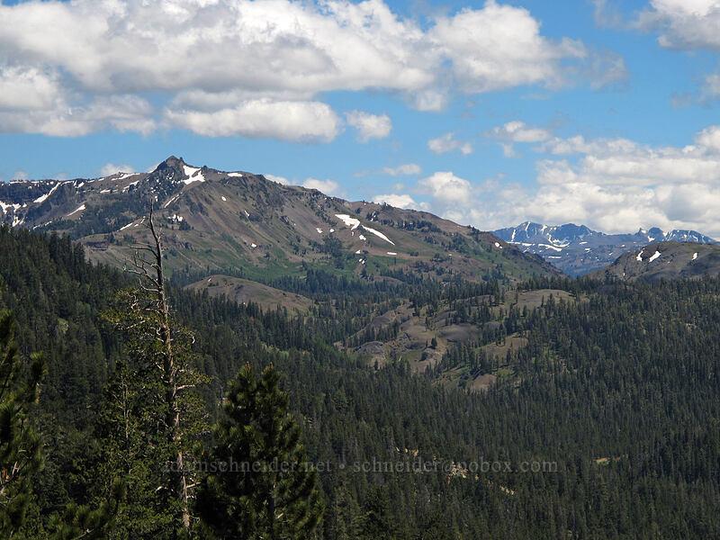 Arnot Peak & Leavitt Peak [CA-4, Toiyabe National Forest, California]
