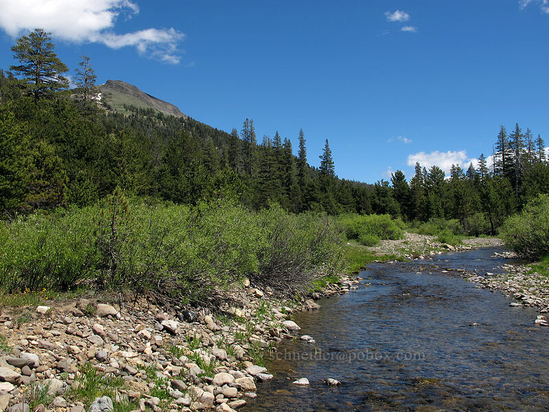 Tryon Peak & the Mokelumne River [Bloomfield Meadow, Toiyabe National Forest, California]