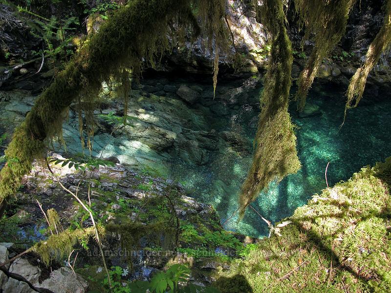 Opal Pool [Kopetski Trail, Opal Creek Scenic Recreation Area, Oregon]