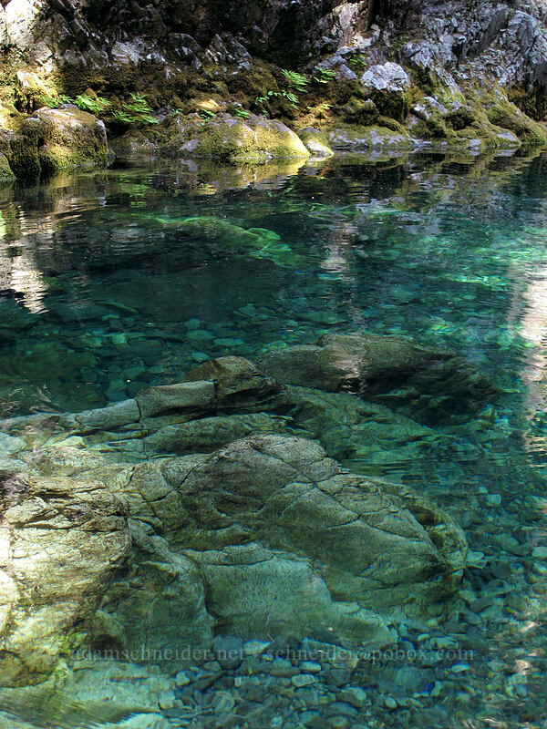 Opal Pool [Kopetski Trail, Opal Creek Scenic Recreation Area, Oregon]