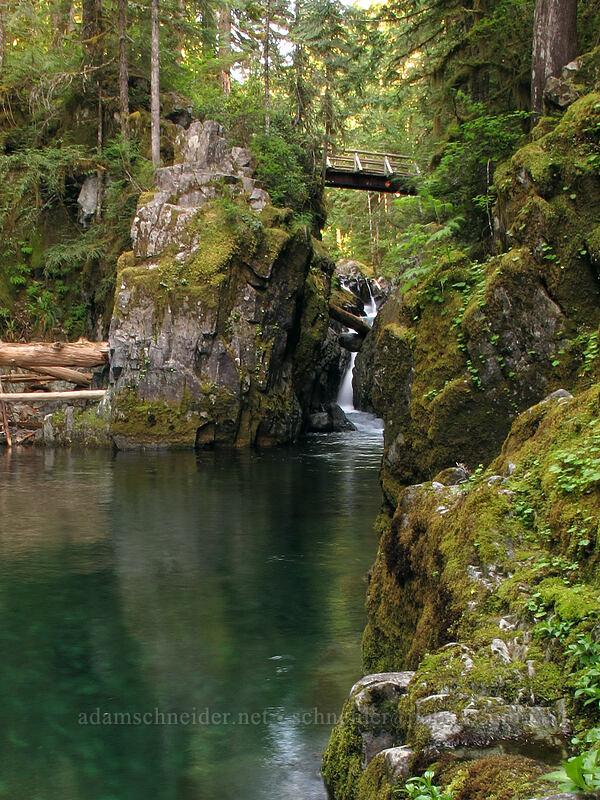 Opal Pool Falls [Kopetski Trail, Opal Creek Scenic Recreation Area, Oregon]