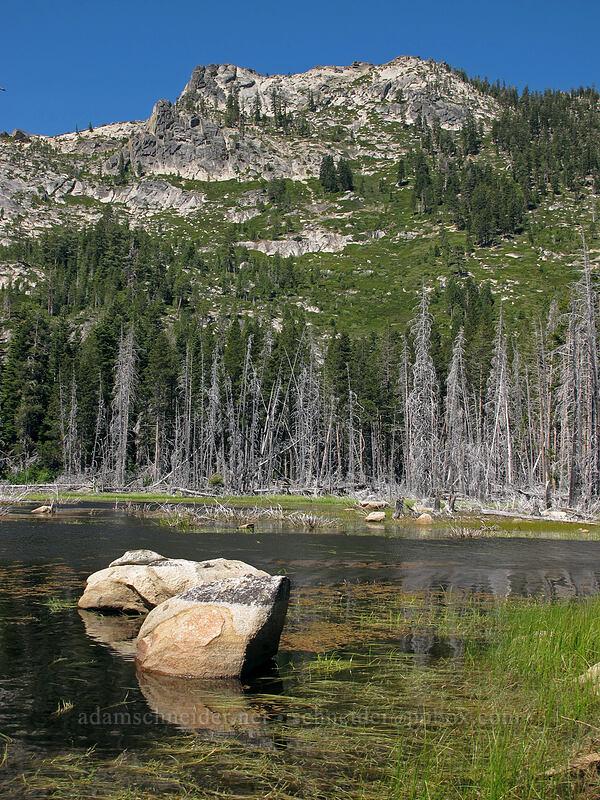 Osgood Swamp & Flagpole Peak [Osgood Swamp, Lake Tahoe Basin, California]