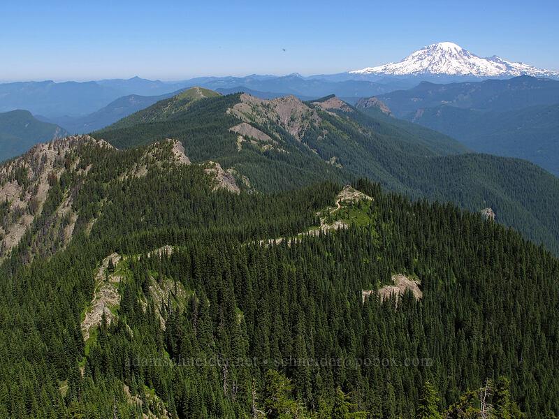 Juniper Ridge & Mt. Rainier [Sunrise Peak, Gifford Pinchot National Forest, Washington]
