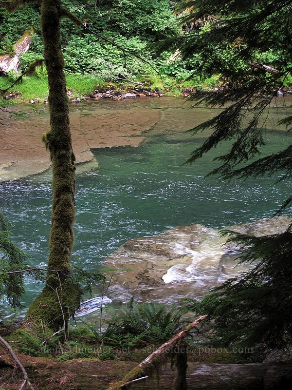 Lewis River [Lewis River Trail, Gifford Pinchot National Forest, Washington]
