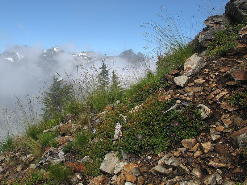 Kendall Peak summit trail [Kendall Peak, Alpine Lakes Wilderness, Washington]