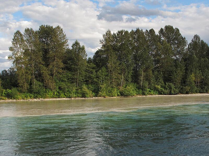 Baker-Skagit confluence [mouth of the Baker River, Concrete, Washington]
