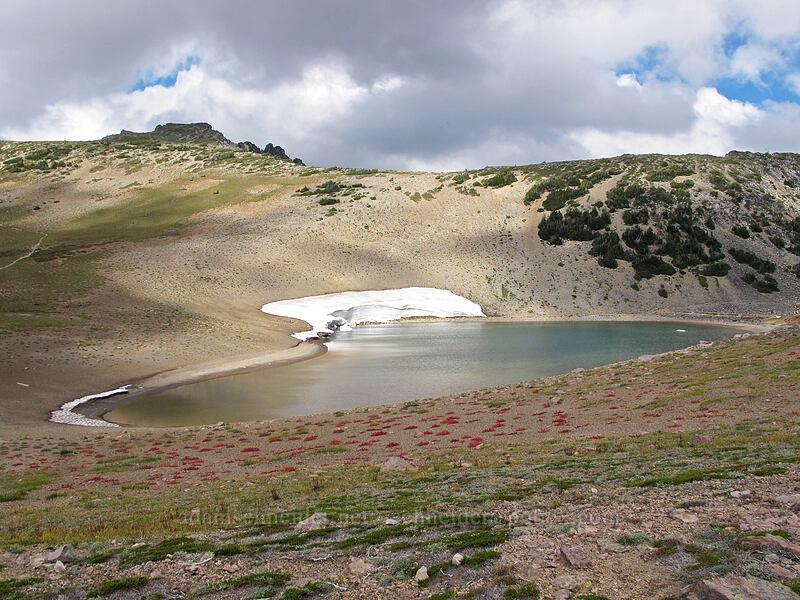 Frozen Lake [Wonderland Trail, Mount Rainier National Park, Washington]