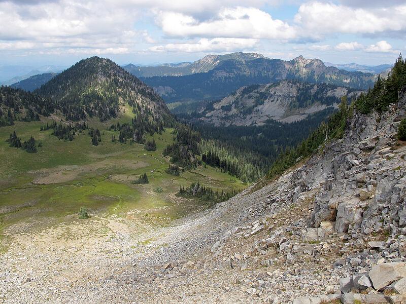 Huckleberry Basin & McNeeley Peak [Sourdough Ridge Trail, Mount Rainier National Park, Washington]