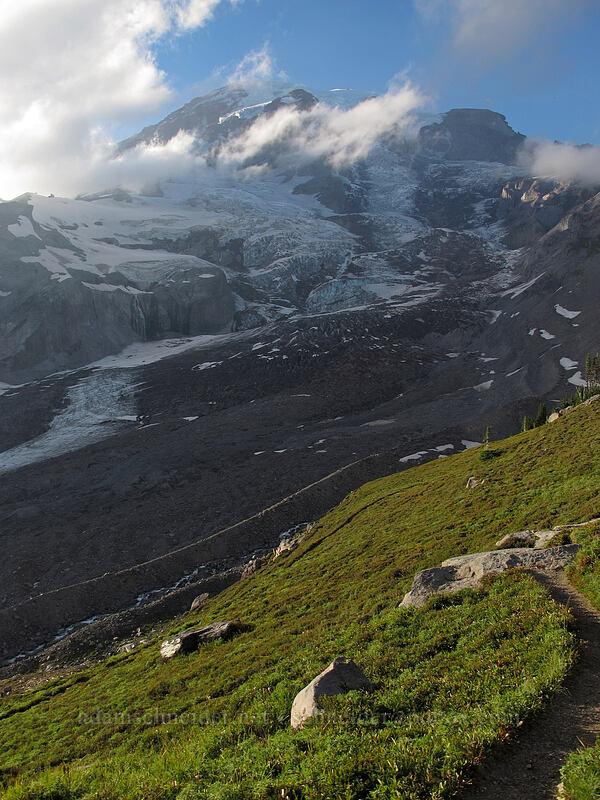 Mt. Rainier & Nisqually Glacier [Glacier Vista Trail, Mount Rainier National Park, Washington]