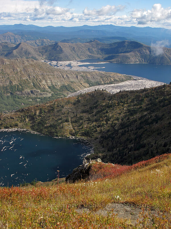 St. Helens Lake & Spirit Lake [Coldwater Peak, Mt. St. Helens National Volcanic Monument, Washington]