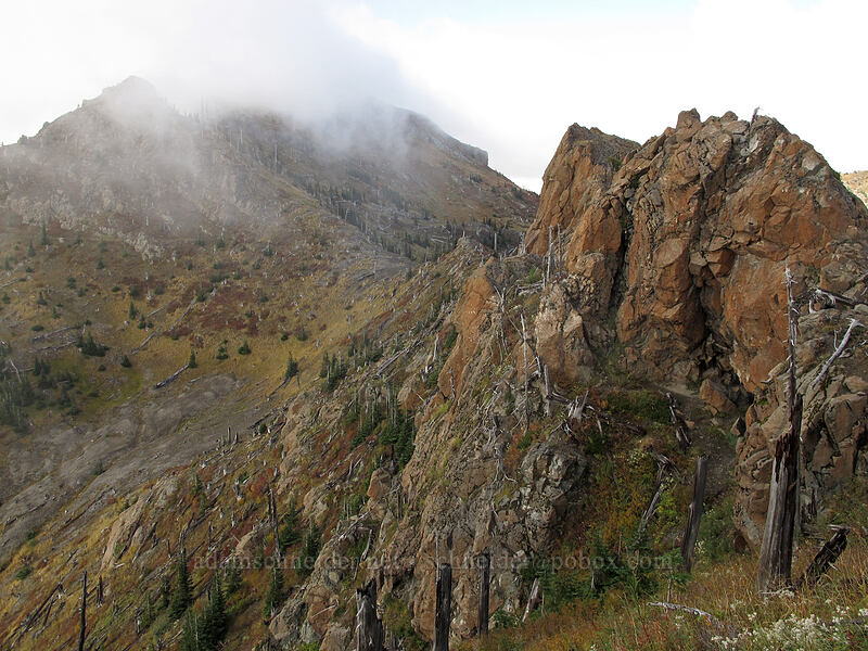 Coldwater Peak, hidden by clouds [Boundary Trail, Mt. St. Helens National Volcanic Monument, Washington]
