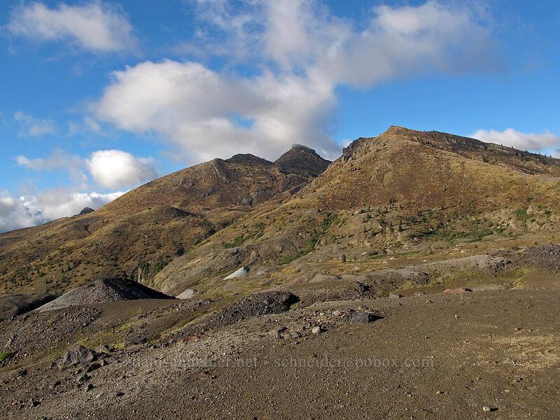 Coldwater Peak [Boundary Trail, Mt. St. Helens National Volcanic Monument, Washington]