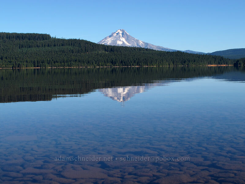 Mt. Hood & Timothy Lake [Hoodview Campground, Mt. Hood National Forest, Oregon]