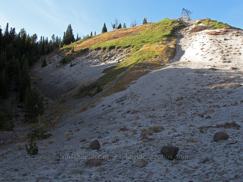 shortcut [Timberline Trail, Mt. Hood National Forest, Oregon]