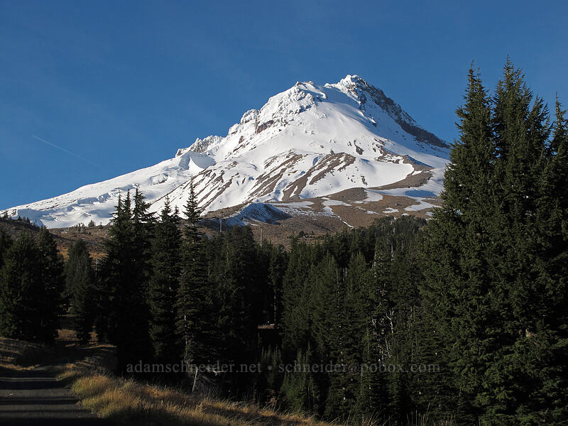 Mount Hood [Mt. Hood Meadows, Mt. Hood National Forest, Oregon]