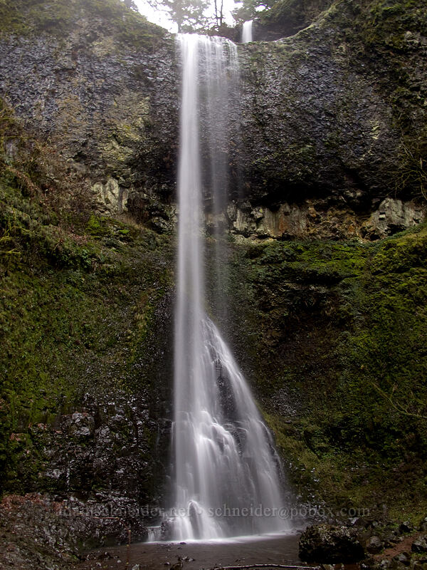 Double Falls [Canyon Trail, Silver Falls State Park, Oregon]