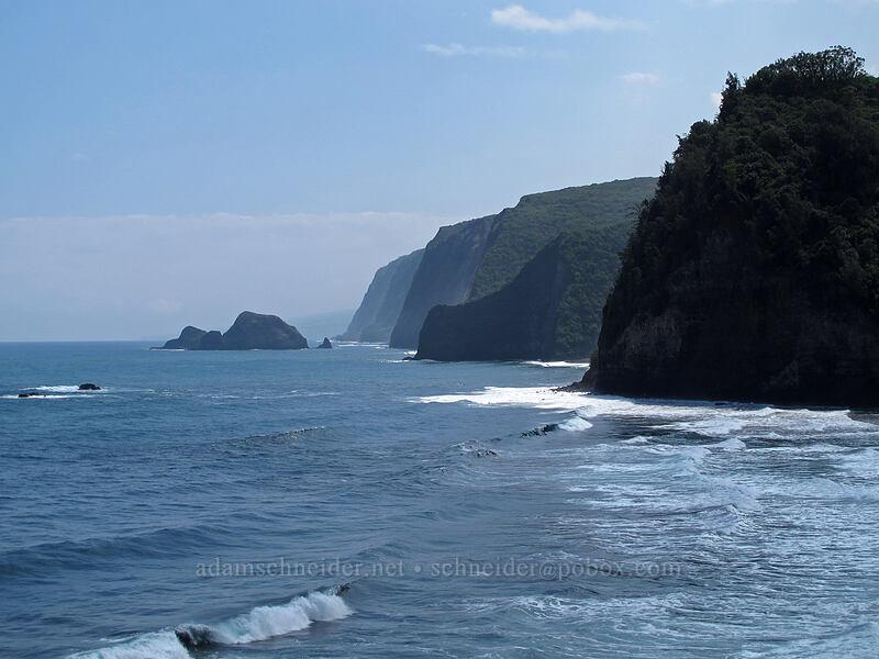 shoreline beyond Pololu [Pololu Trail, Kohala Forest Reserve, Big Island, Hawaii]