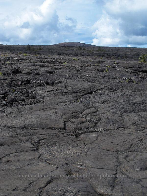 Mauna Ulu & lava [Chain of Craters Road, Hawaii Volcanoes National Park, Big Island, Hawaii]