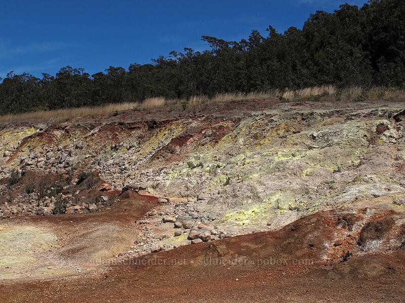 sulfur deposits [Sulphur Banks Trail, Hawaii Volcanoes National Park, Big Island, Hawaii]