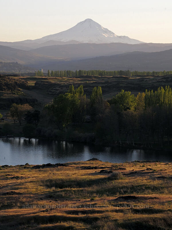 Mt. Hood & Horsethief Lake [Horsethief Butte, Columbia Hills State Park, Washington]