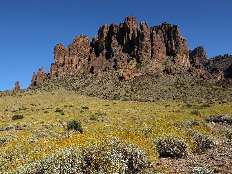 Superstition Mountain [Siphon Draw Trail, Tonto National Forest, Arizona]