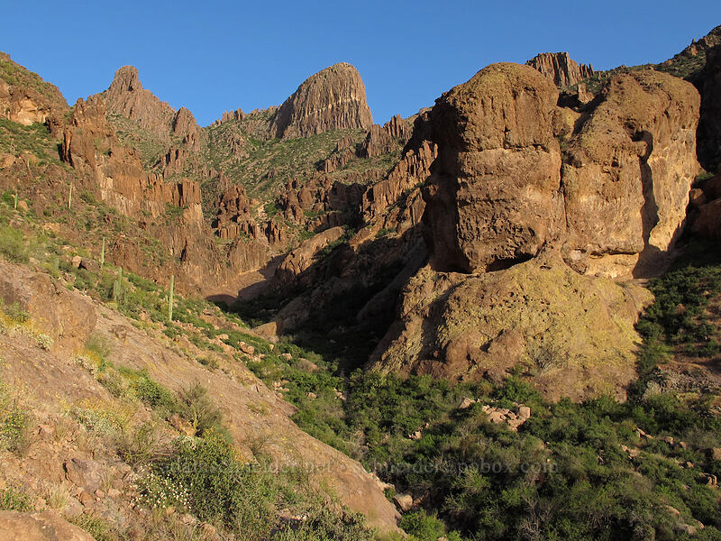 Siphon Draw & The Flatiron [Siphon Draw Trail, Superstition Wilderness, Arizona]