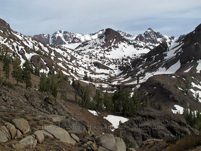 Blue Canyon & Leavitt Peak [Sonora Pass Road, Toiyabe National Forest, California]
