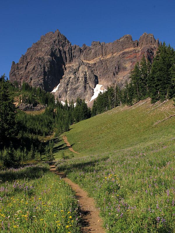 Three-Fingered Jack & Canyon Creek Meadows [Canyon Creek Meadows, Mt. Jefferson Wilderness, Oregon]