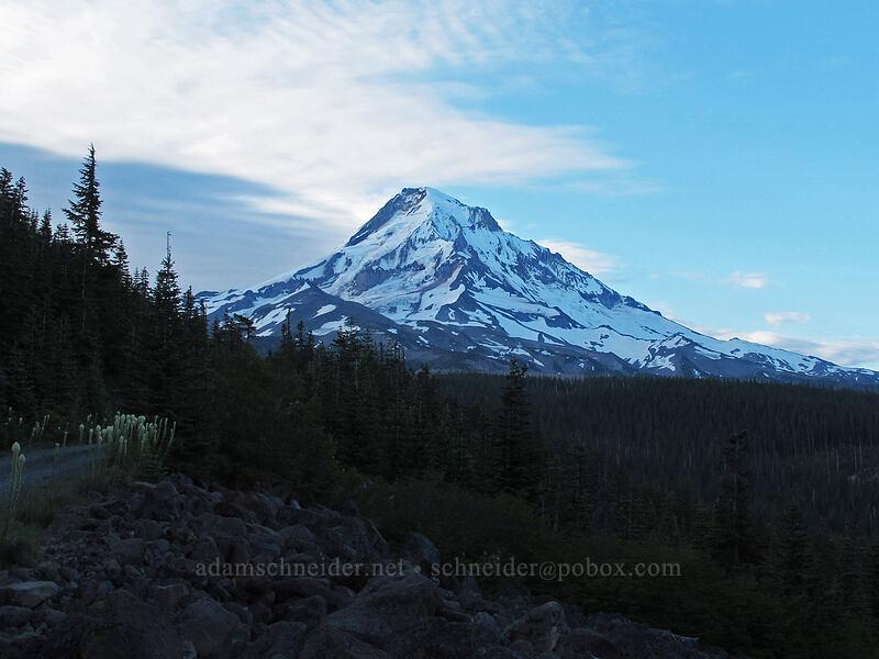 Mt. Hood [Forest Road 1650, Mt. Hood National Forest, Oregon]