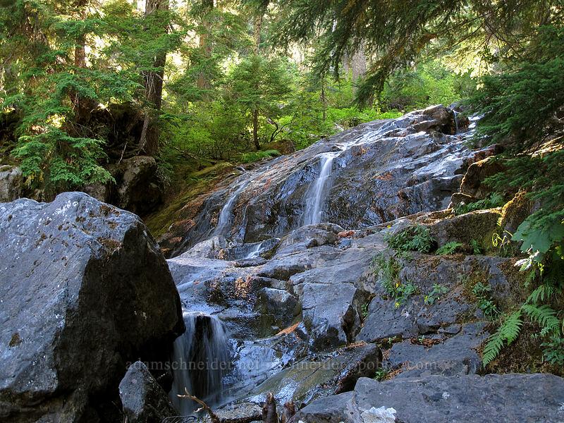 stream [Rachel Lake Trail, Alpine Lakes Wilderness, Washington]