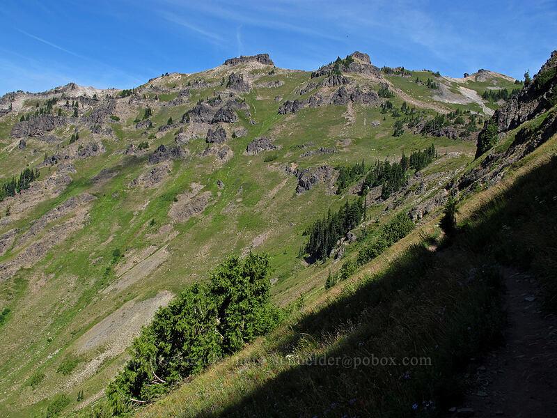 ridge above Jordan Basin [Goat Ridge Trail, Goat Rocks Wilderness, Washington]