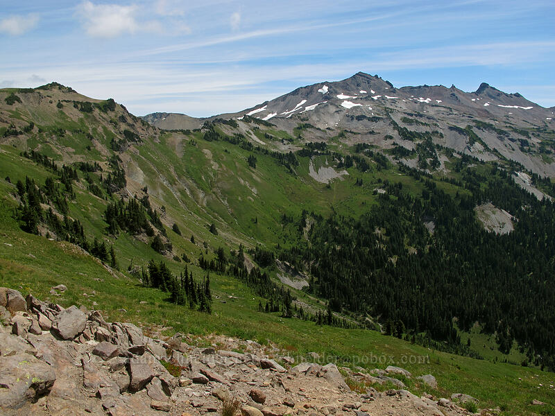 upper Goat Creek Valley [Lily Basin Trail, Goat Rocks Wilderness, Washington]