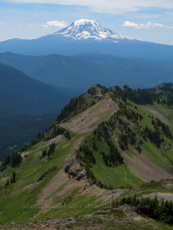 Mt. Adams & Goat Ridge [Hawkeye Point Trail, Goat Rocks Wilderness, Washington]
